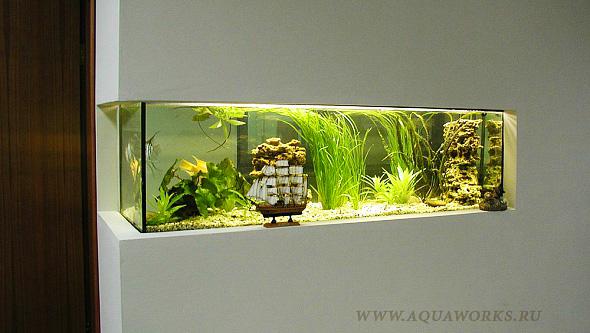 Пресноводные аквариумы на заказ.